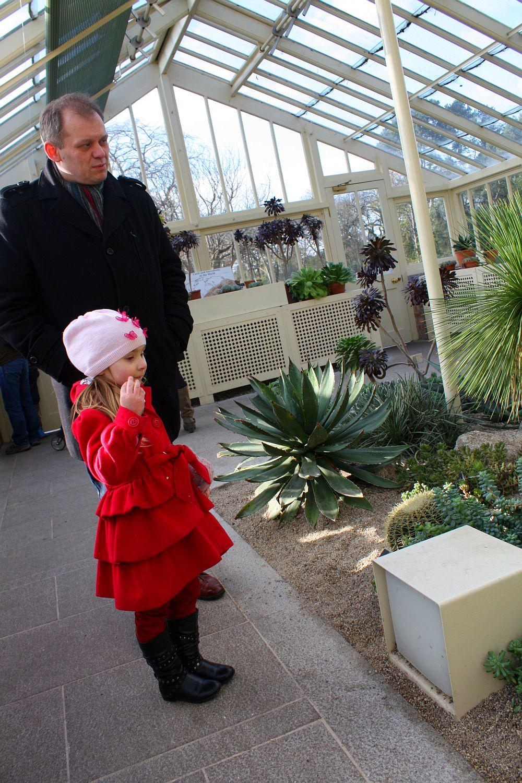 Botanic Garden: z tatą