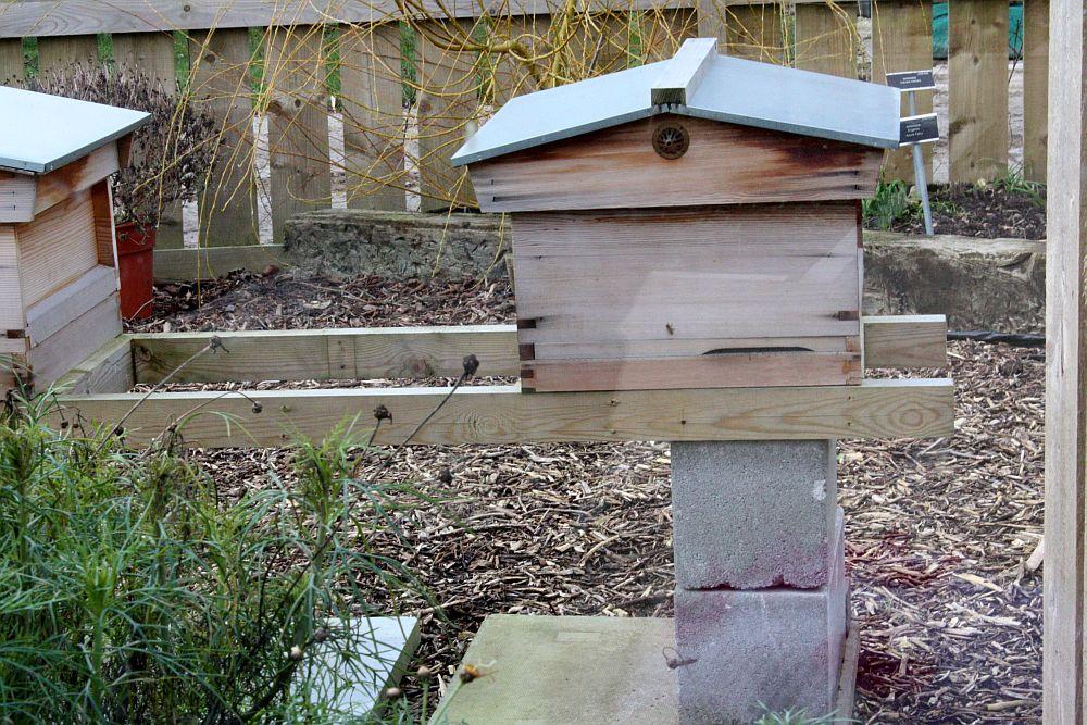 Ule - pszczółki śpią