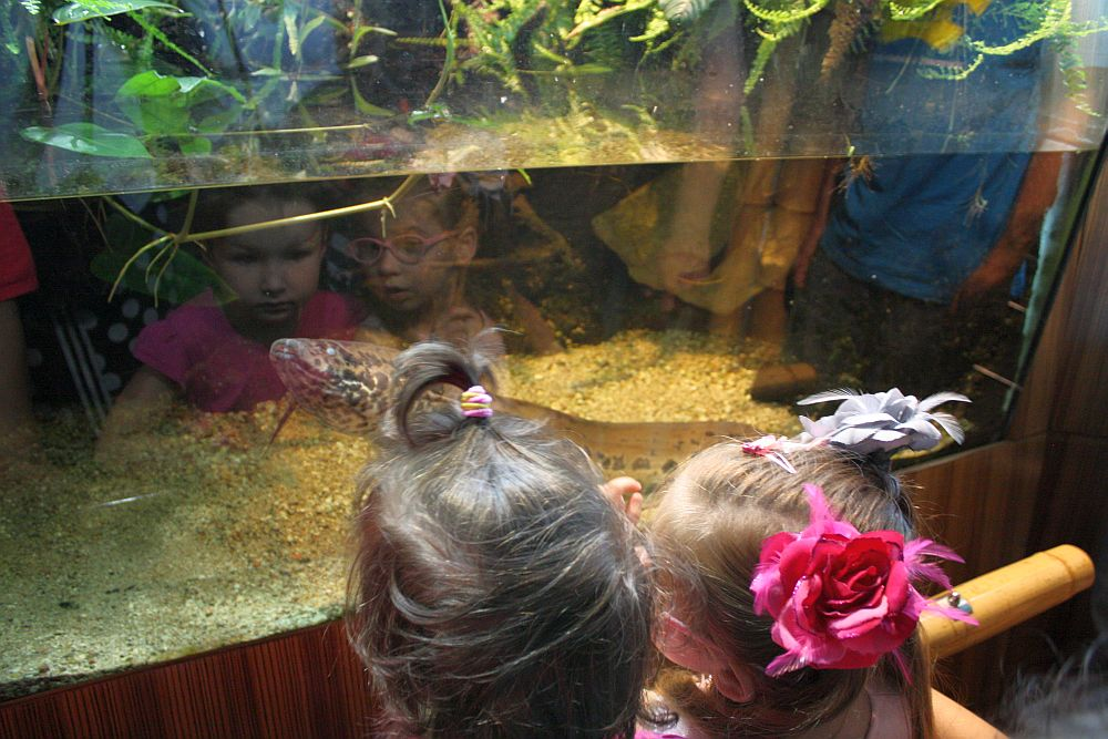 Zwiedzam Akwarium morskie w Gdyni