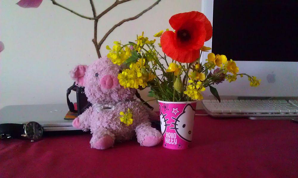 Polne kwiaty dla mamy