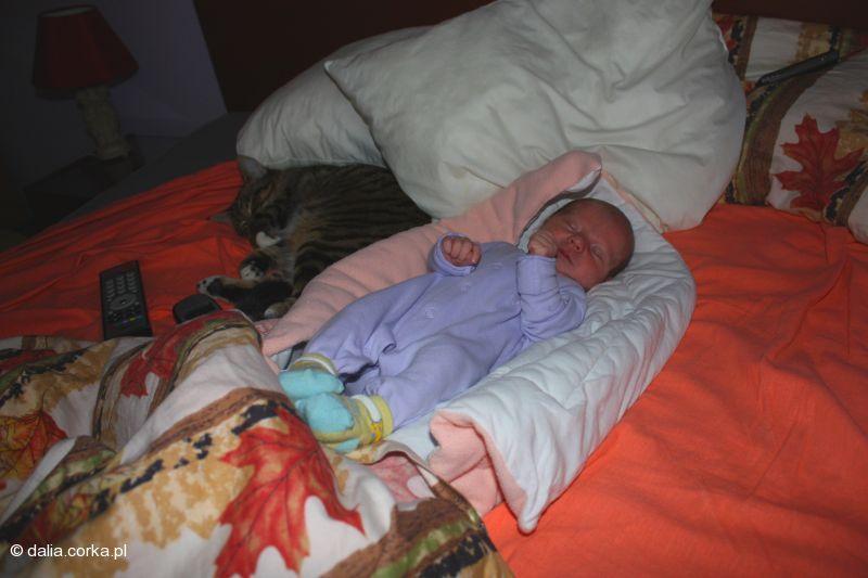 Grzecznie śpię z moim kotkiem