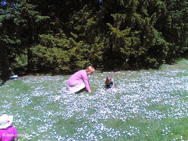W Botanic Park z mamą