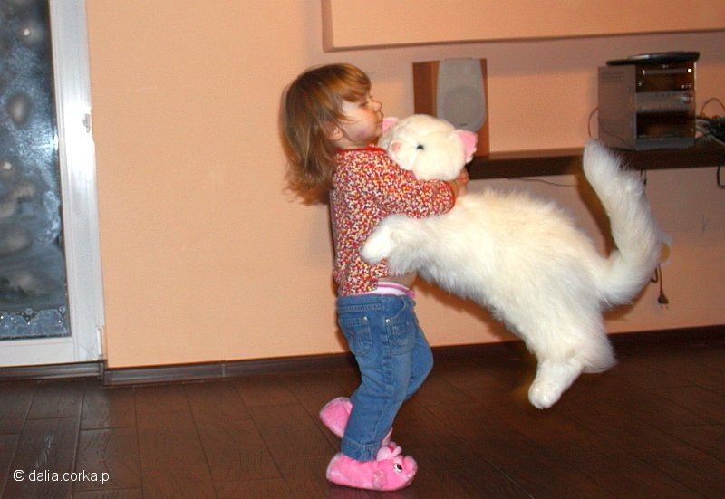 Taniec z kotem